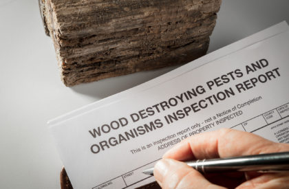 Pest inspection report for real estate transactions.